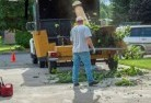 Banks Tree felling services 11