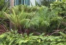 Banks Tropical landscaping 2